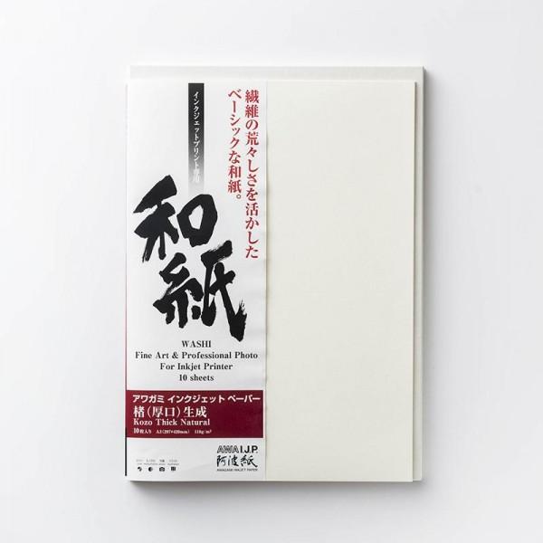 Awagami AIP Kozo Thick Natural 110