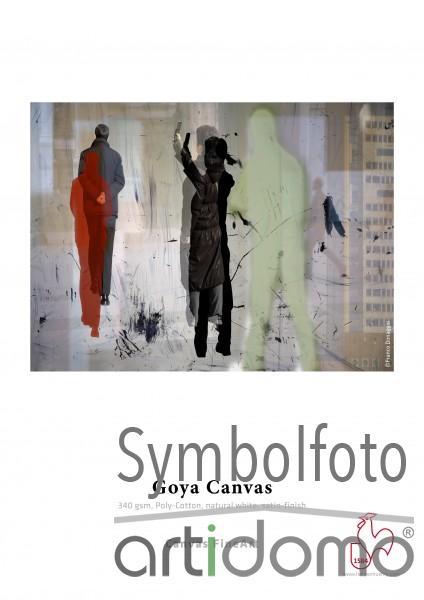 Hahnemühle Goya Canvas 340