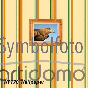 Tecco WP170 Wallpaper