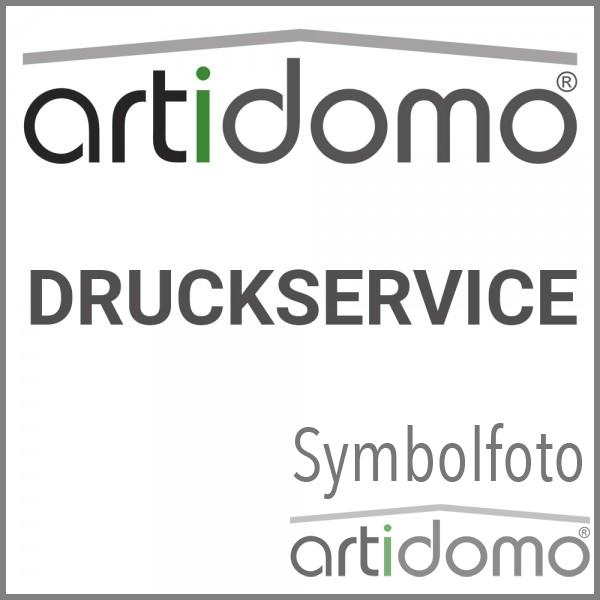 Druck auf Hahnemühle Photo Rag Ultra Smooth 305